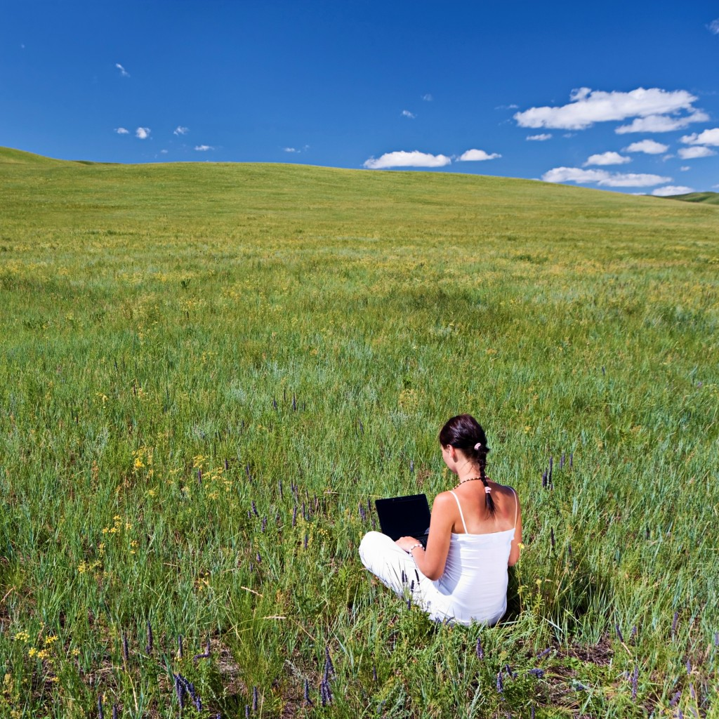 Young woman sitting in the grass telecommuting with a laptop