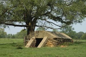 Survival bunker in the field