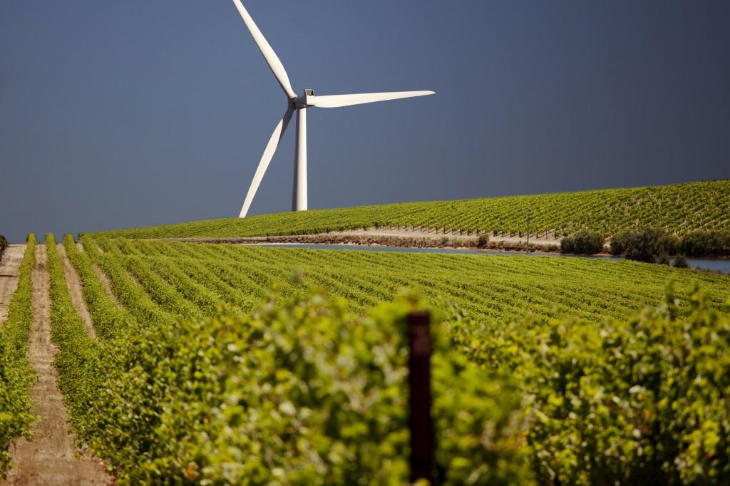 Windturbine in farm field