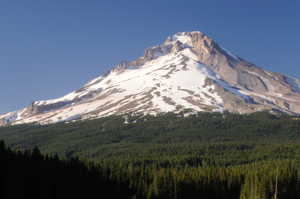 South side of mt hood in the summer