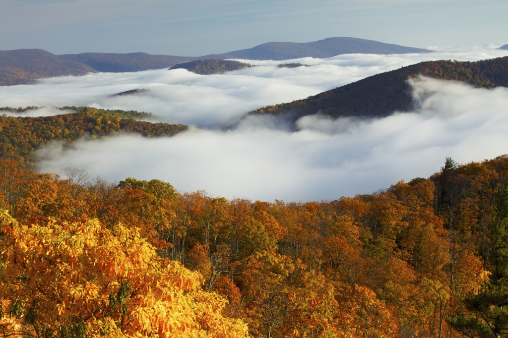 Shenandoah National Park with fall colors
